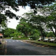 Campus Umuarama - Estacionamento